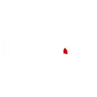 logo Sinunai