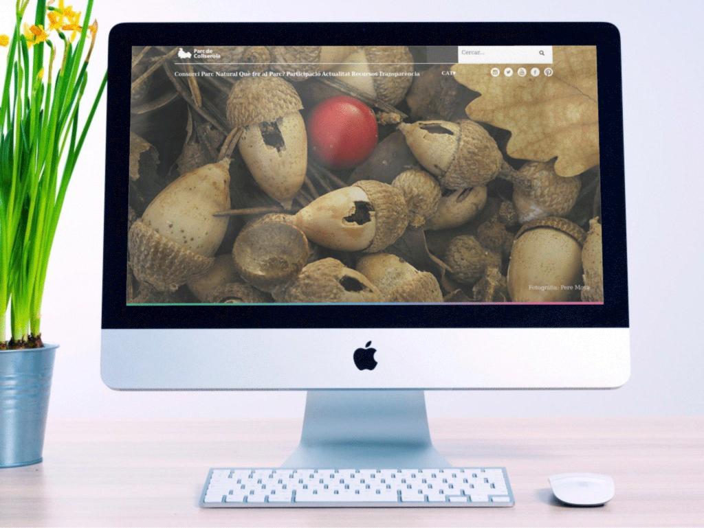 Diseño web de Organismos Institucionales